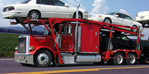 New Auto Transport Services